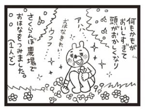 tamukuma20160624_4