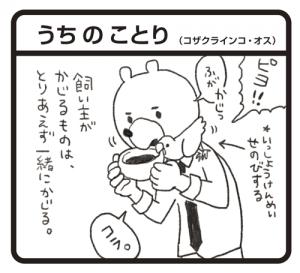 tamukuma20160624_1