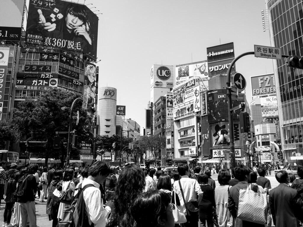 完成したモノクロ(Black & White)写真